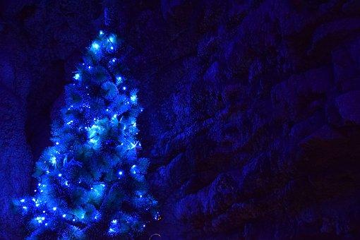 Christmas, Christmas Tree, Blue, Snow, Night