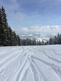 Winter, Snow, Tracks In The Snow, Skiing, Nature