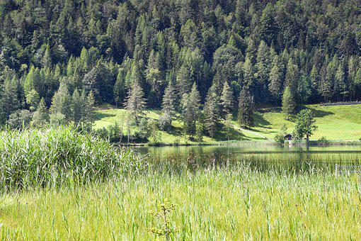 See, Alpen, Schweiz, Landschaft, Natur, Spiegelung