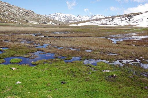 Mountains, Lake, Rocks, Snow, Alpine, Mountain Pastures