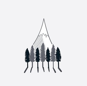 Trees, Forest, Mountain, Camp, Adventure