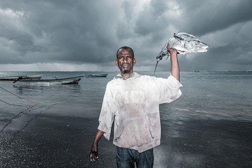 Man, Fish, Fisherman, Fishing, Catch, Fishing Boat