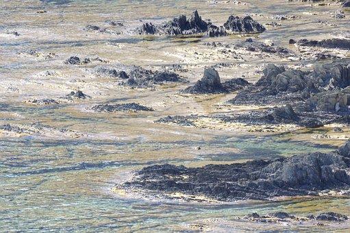 Side, Rocks, Sea, Mediterranean, Algae, Shore, Water