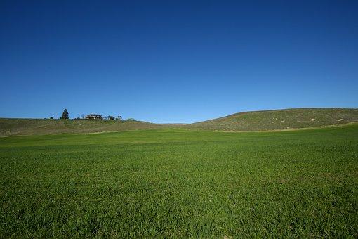 Yosemite, Green, Landscape, Valley, Mountain