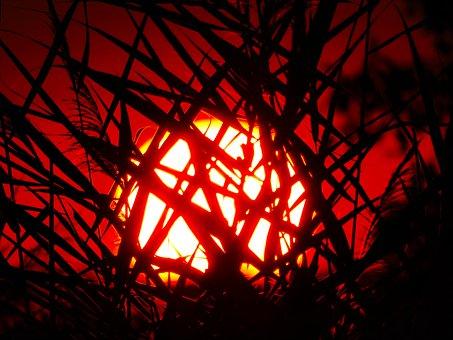 The Sun, West, Sky, Twilight, Landscape, Red, Meadow