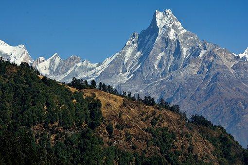 Mountains, Summit, Landscape, Trees, Forest, Peak