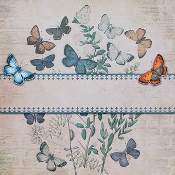 Vintage, Paper, Butterflies, Background, Old, Nostalgia