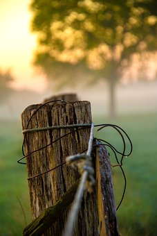 Wood, Post, Fence, Old Wood, Tree Trunk, Raw Material