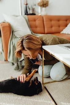 Woman, Dog, Playing, Playful, Bonding, Happiness, Pet