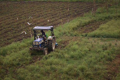 Crop, Tractor, Farmer, Agriculture, Farm, Field, Barn