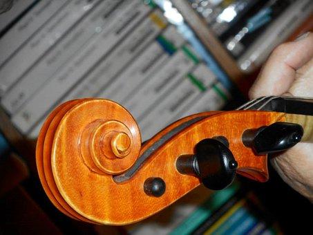 Gosling, Violin, Music, Classic Music, Musician