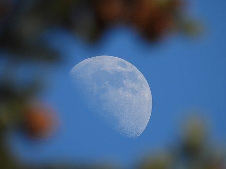 Moon, Blue, Space, Universe, Sky, Lunar, Astronomy