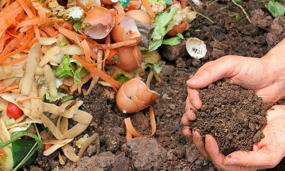 Compost, Ecology, Waste, Garden, Nature, Fertilizer