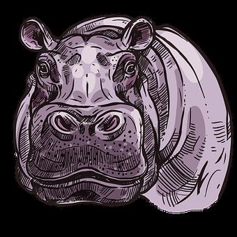 Hippopotamus, Animal, Wildlife, Hippo