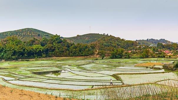Rice Paddies, Mountains, Farm, Farmland, Farming