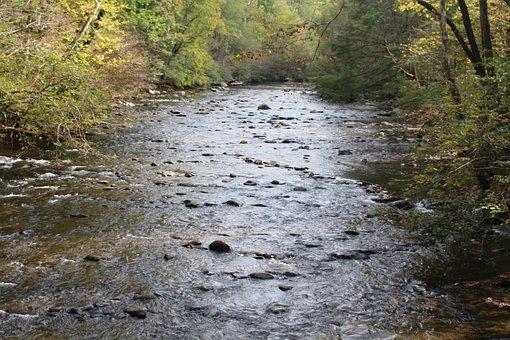 Shallow Stream, Mountain, Stream