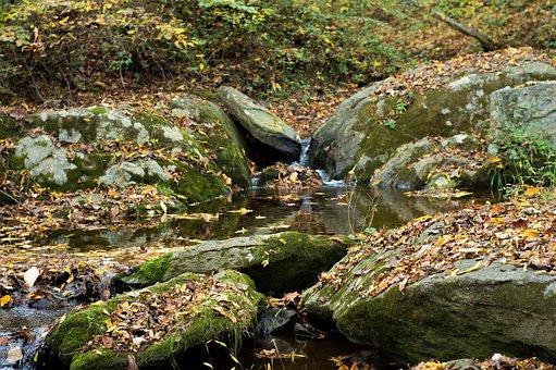 Creek, Rocks, River, Stream, Nature, Landscape, Forest