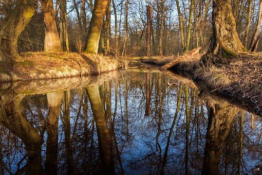 Creek, Water, Nature, Rock, Landscape, Stones, Scenic