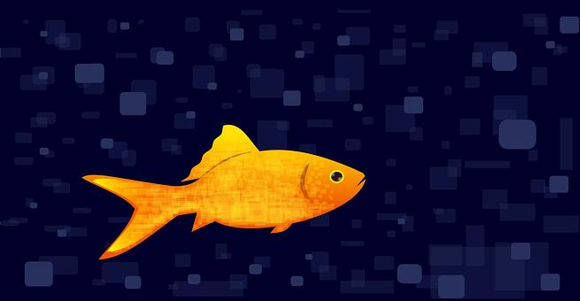 Fish, Goldfish, Water, Sea, Swim, Gold, Background