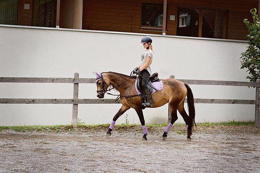Girl, Ride, Horse, Pony, Paddock, Brown Horse