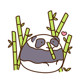 Panda, China, Bear, Animals, Zoo, Pandas, Cute, Bamboo