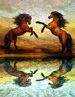 Horses, Stallions, Equine, Expressionism, Reflection