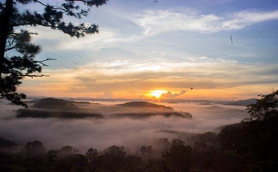 Vietnam, Kon Tum, Bigmangden, Sunlight, Nature