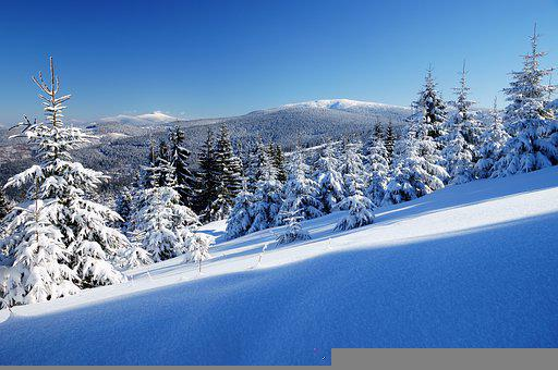 Winter, In, Beskids, Poland, Landscape, Cold, Snow