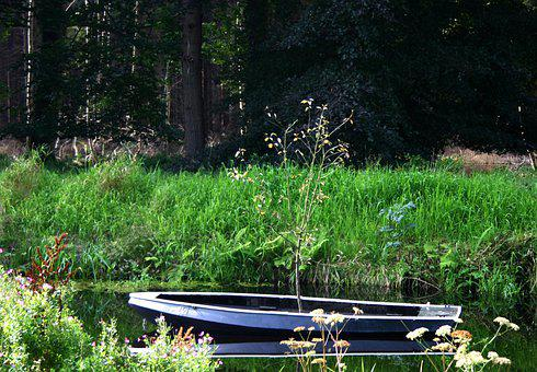 Boat, Tree, Water, Nature, River, Scenic, Forest