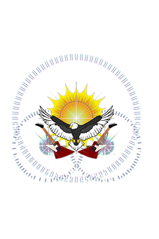 Eagle, Sun, Rays, Guitar, Gibson, Design, Explorer