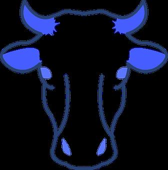 Animal, Cow, Farm, Bull