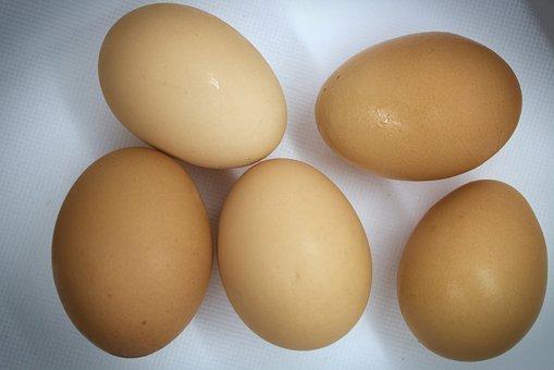 Eggs, Eggshells, Chicken Eggs, Chicken Product, Food