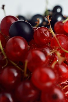 Ribes, Red, Fruit, Berries, Food, Sweet, Delicious