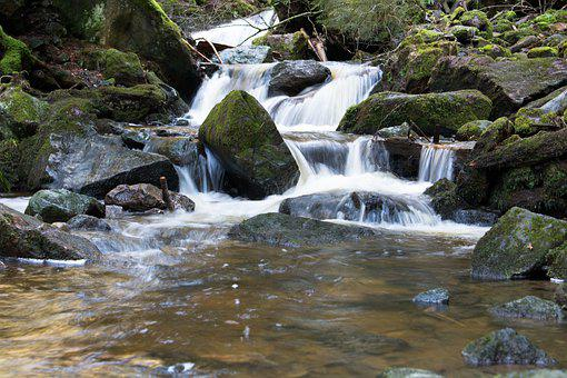 Water, River, Nature, Landscape, Waterfall, Forest