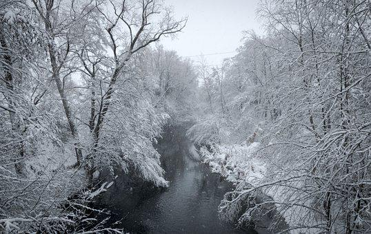 Winter, Snow, Scene, River, Park, Cold, Landscape