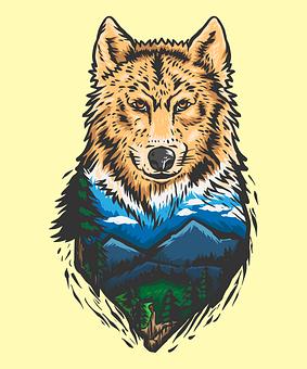 Animal, Forest, Wildlife, Wolf, Cat, Mammal, Head