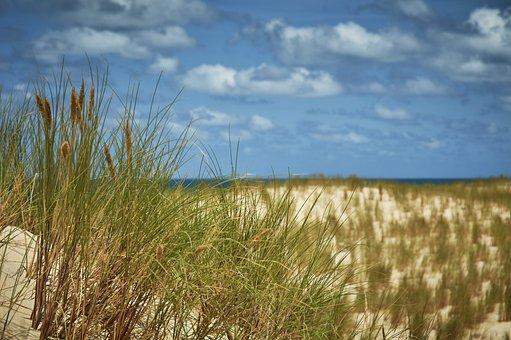 Beach, Sand, Atlantic, Ocean, Nature, Vacation, Sea