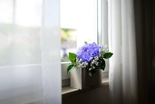 Flower Vase, Window, Curtains, Room, Purple Flower