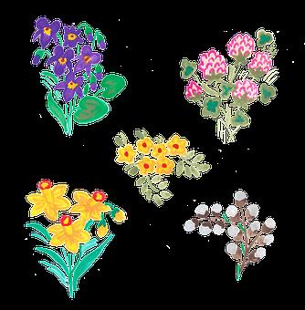 Spring, Vernal, Violet, Violets, Clover, Daffodil