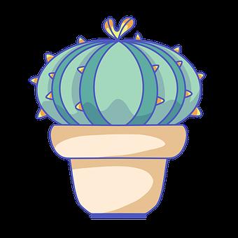 Cactus, Succulent, Plant, Cacti, Pot, Desert
