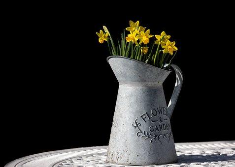 Daffodils, Flowers, Jug, Vase, Decorative, Decoration