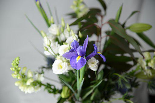 Flowers, Flower Arranging, Mother's Day, Wedding