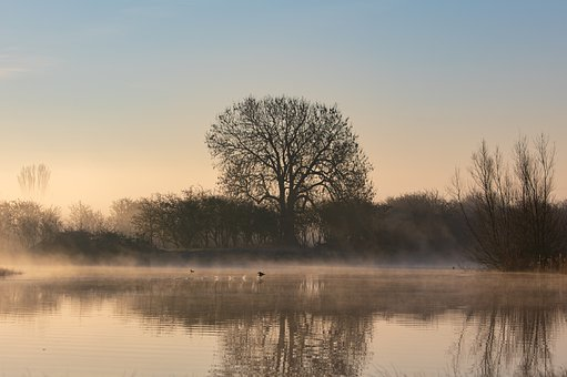 River, Sunrise, Fog, Reflection, Water, Riverbank, Mist