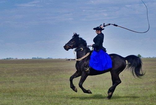 Horse, Horseback Riding, Whip, Rider, Horse Riding
