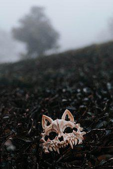 Mask, Costume, Teeth, Bones, Skull, Model, Portrait