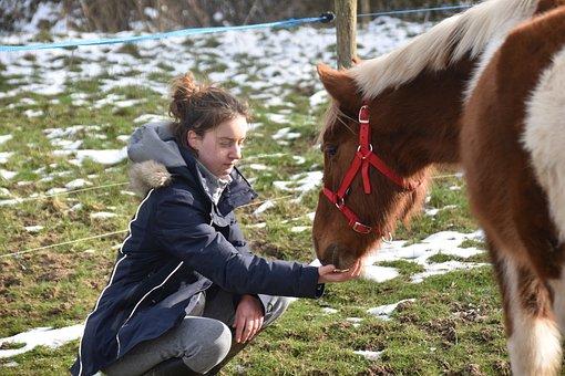 Horse, Girl, Horseback Riding, Duo, Pair, Complicity