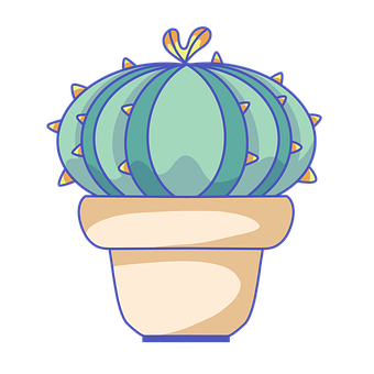 Cactus, Succulent, Plant, Cacti, Pot