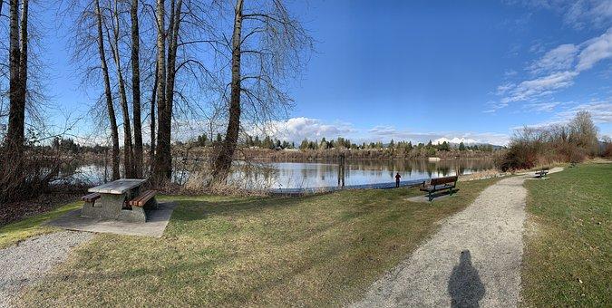 Park, Trail, River, Lake, Path, Waterfront, Trees