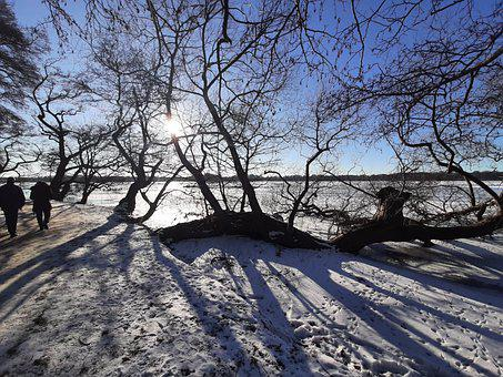 Winter, Winter Holiday, Snow, Landscape, Cold, Sky