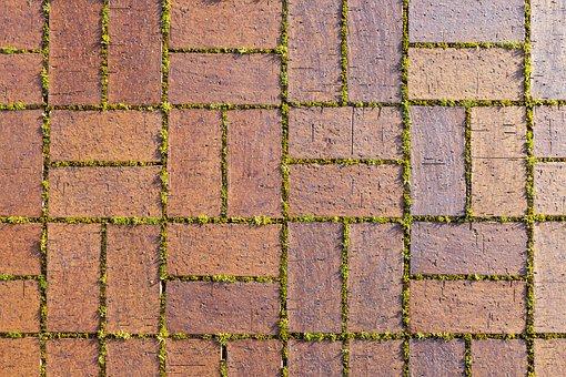 Bricks, Sidewalk, Moss, Pattern, Surface, Texture